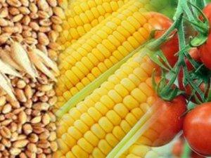 Hububat, baklagil ve mısırda prim başvurusu için son gün 30 Nisan