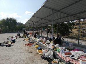 Alıç meyvesi Aksaray'da köylülerin sezonluk geçim kaynağı oldu