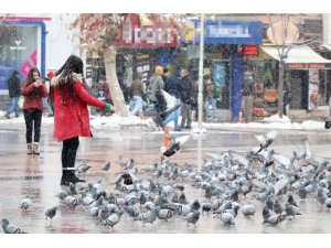 Aksaray'da soğuk havada kuşlara vatandaşlardan yem