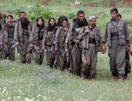 PKK'ya katılımda rekor!
