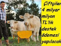 Çiftçilere 4 milyar 210 milyon TL'lik destek ödemesi yapılacak