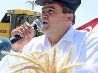 Hasat Bayramı İle Çiftçiler Tarlaya İndi