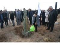 Aksaray'da 'Gönül Elçileri' Projesi Kapsamında Fidan Dikimi Yapıldı