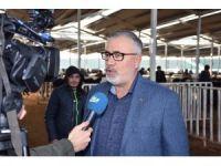 Aksaray'a 60 Bin Hayvanlık Dev Tesis