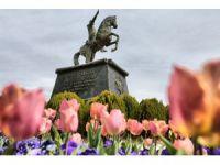 Aksaray Çiçeklerle Güzelleşiyor