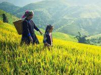 Genç Kadın Çiftçilere Yönelik Girişimcilik Eğitimleri Gerçekleştirilecek