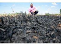 Çiftçilere 'Anız yakma, geleceğini yakarsın' uyarısı