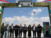 Aksaray'ın ilk ve tek at binicilik tesisi hizmete açıldı