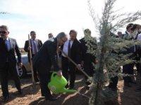'Adalet Ormanı' Fidan Dikim Töreni Düzenlendi