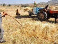 Mart 2019,Tarım Ürünleri Üretici Fiyat Endeksi