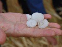 Aksaray'da afed olan köylerde ön inceleme yapıldı