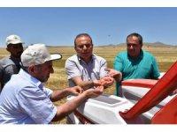 Aksaray'da doğrudan ekim mibzeri arazide