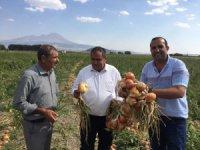 Aksaray'da alternatif ürün üretimi 3 kat artırıldı