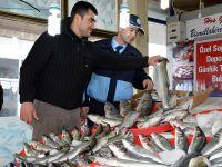 Yapılan bu denetimler sağlıklı ve taze balık için!