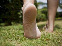 Toprağa çıplak ayakla basın!