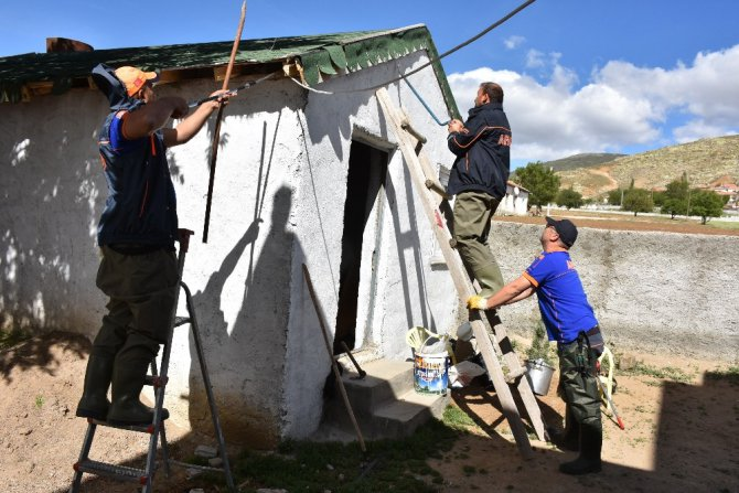 Aksaray'da Müstakil Bir Evin Müştemilatına Giren Yılan Paniğe Neden Oldu