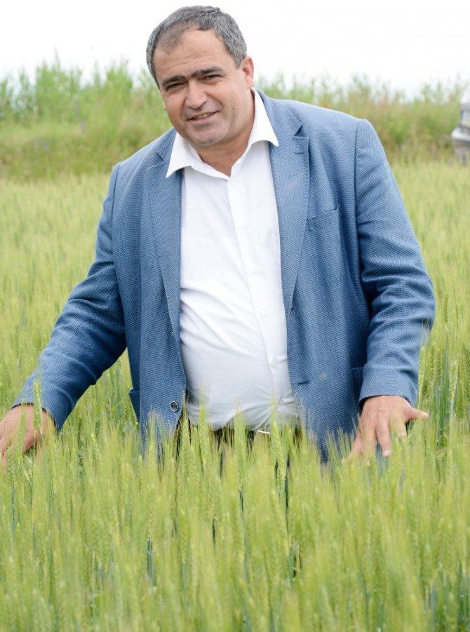 Aksaray'da Ekili Tarım Arazileri Denetim Altında