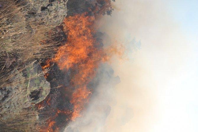 Hasan Dağı'nda orman yangını