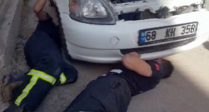 Otomobilin motor kısmına sıkışan kedi kurtarıldı