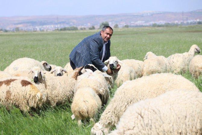 """Başkan Aktürk: """"Türkiye'de et değil, ot sorunu var"""""""