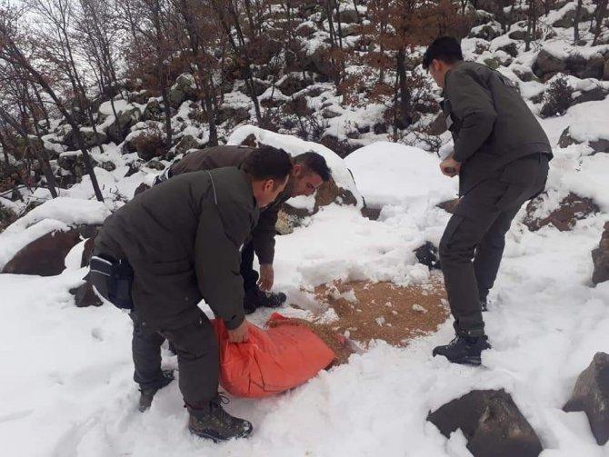 Aksaray'da yaban hayvanları için doğaya yem bırakılıyor