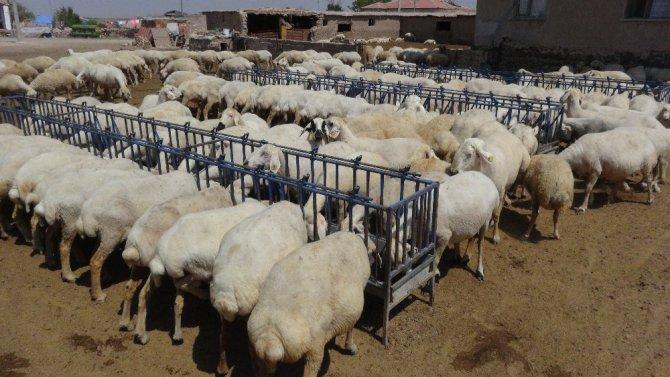 Tarım ve hayvansal üreticiler de kredi ertelemesi istiyor