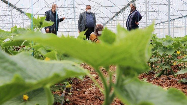 Aksaray'da tarımsal üretim sürüyor