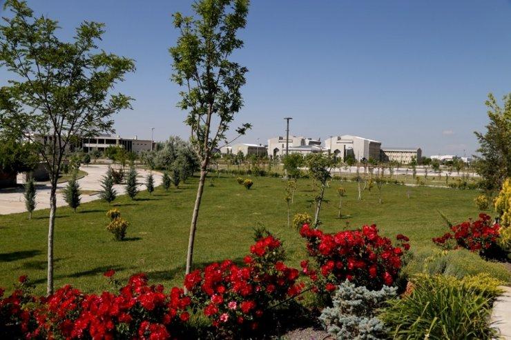 ASÜ'de 72 futbol sahası büyüklüğünde yeşil alan oluşturuldu