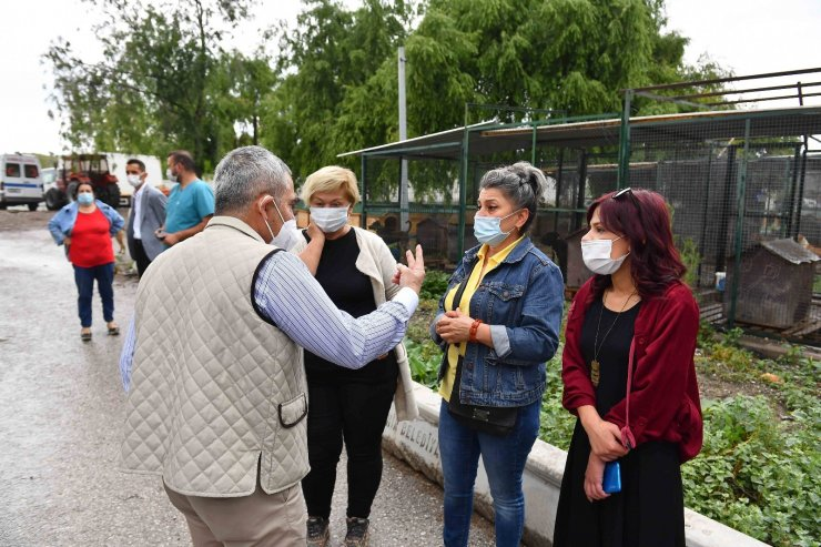 Ankara'da hayvanseverler ve belediye arasında iş birliği