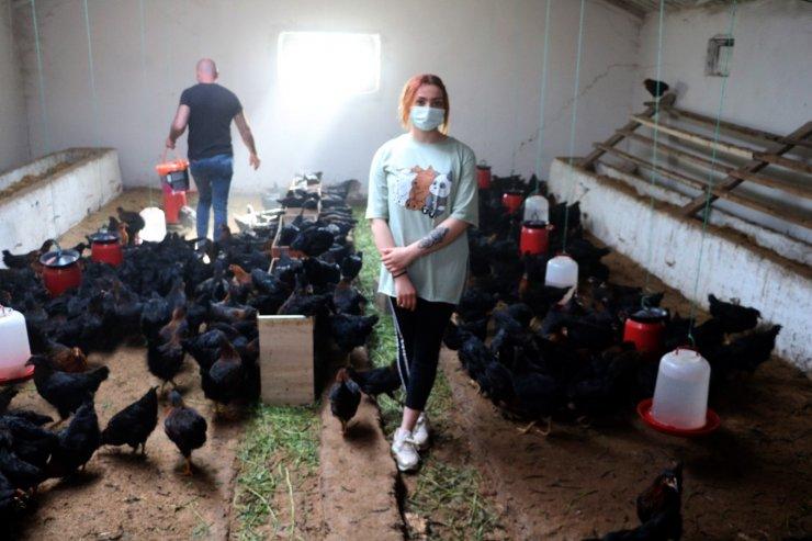 Üniversite eğitimini yarıda bırakıp organik yumurta üretimine başladı