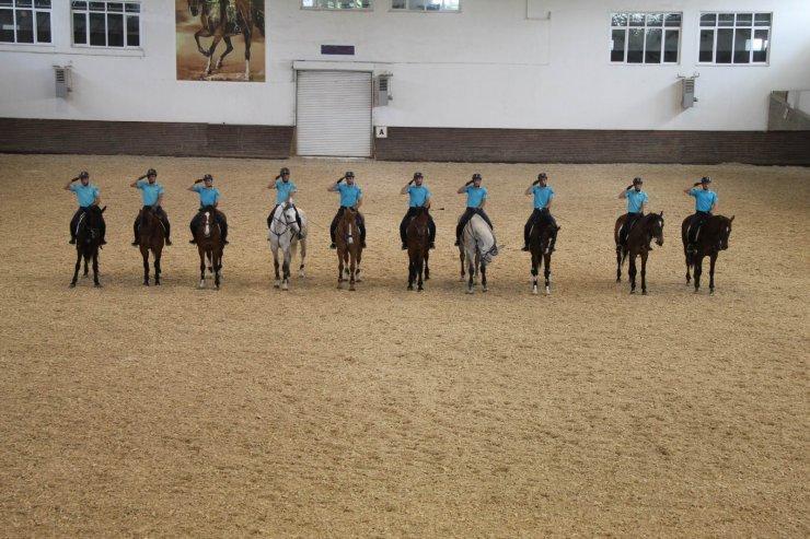 JAKEM'de eğitilen atlar Türkiye'nin çeşitli illerinde emniyet ve asayişi sağlıyor