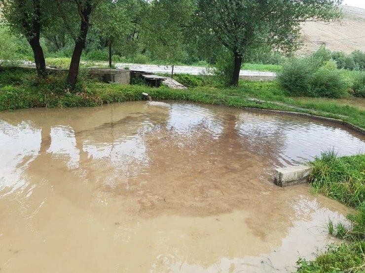 Gürün'de sel, tonlarca alabalık kayıp